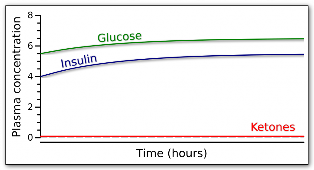 Fasting response while giving supplemental glucose over time in terms of glucose, insulin, and ketones.