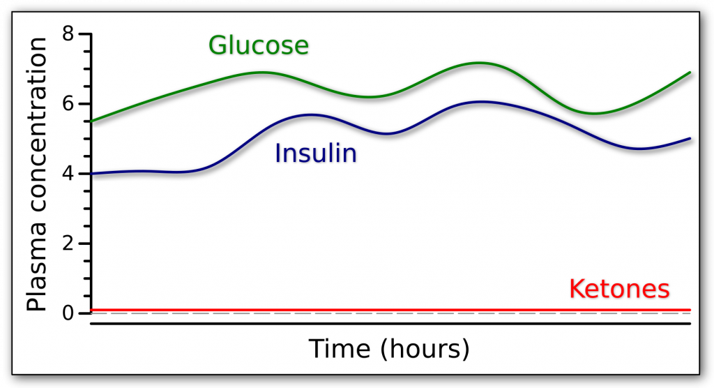 Graph of the fasting response in someone who can not make endogenous insulin while giving glucose and insulin exogenously.