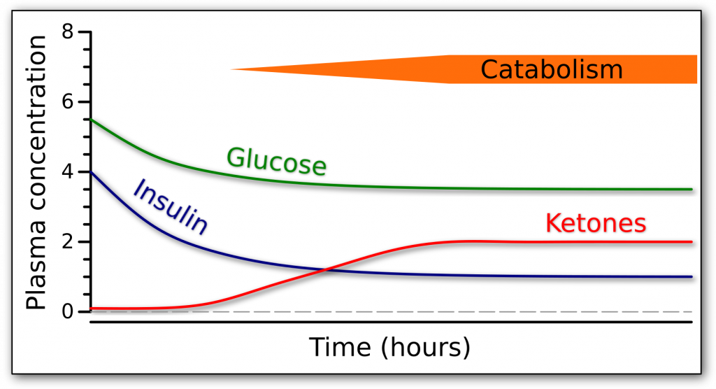 Graph of the fasting response over time in terms of glucose, insulin, and ketones.